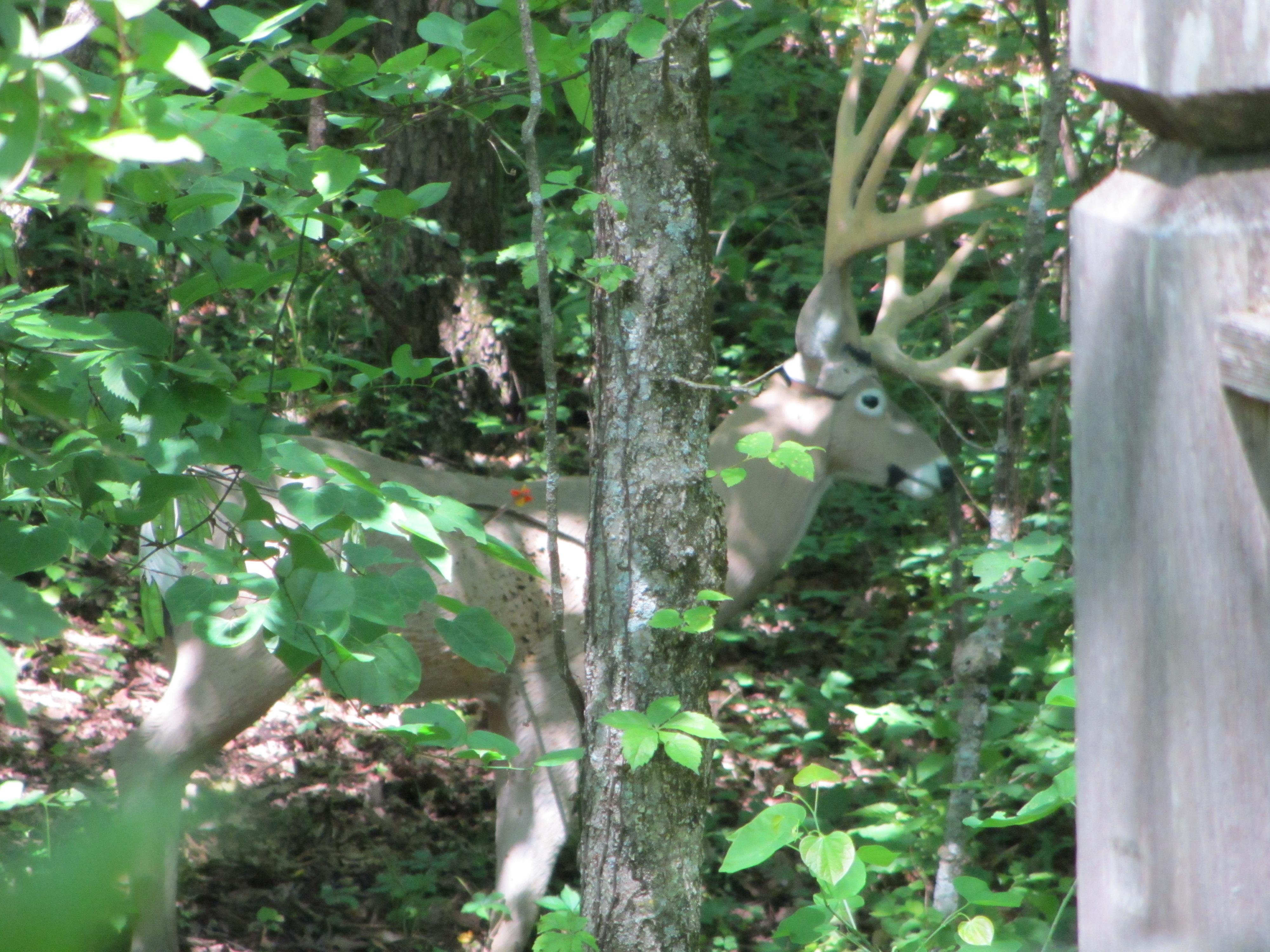 Three+Trails+Shoot+5-2012+007