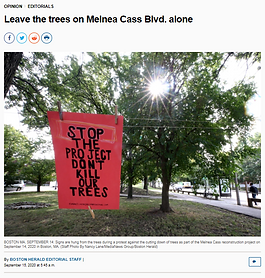 """Sign hanging between two trees that reads """"Stop the project don't kill our trees"""""""