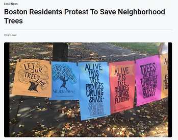 POsters strung between two trees that celebrate trees and what the benefits they provide while alive