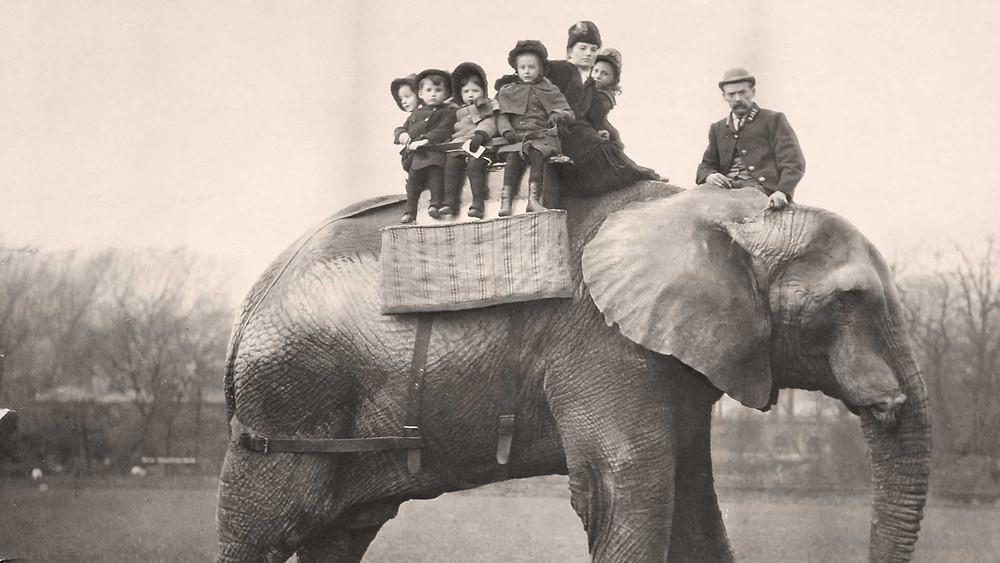 Jumbo transportant des enfants sur son dos