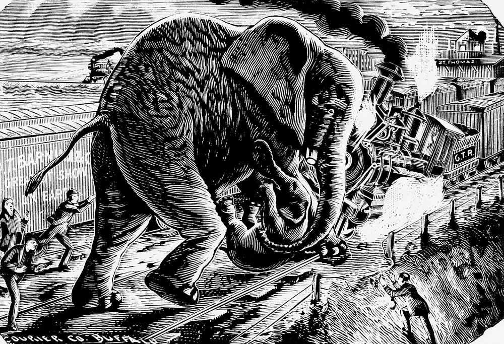 Jumbo sauvant l'éléphant nain Tom Pouce