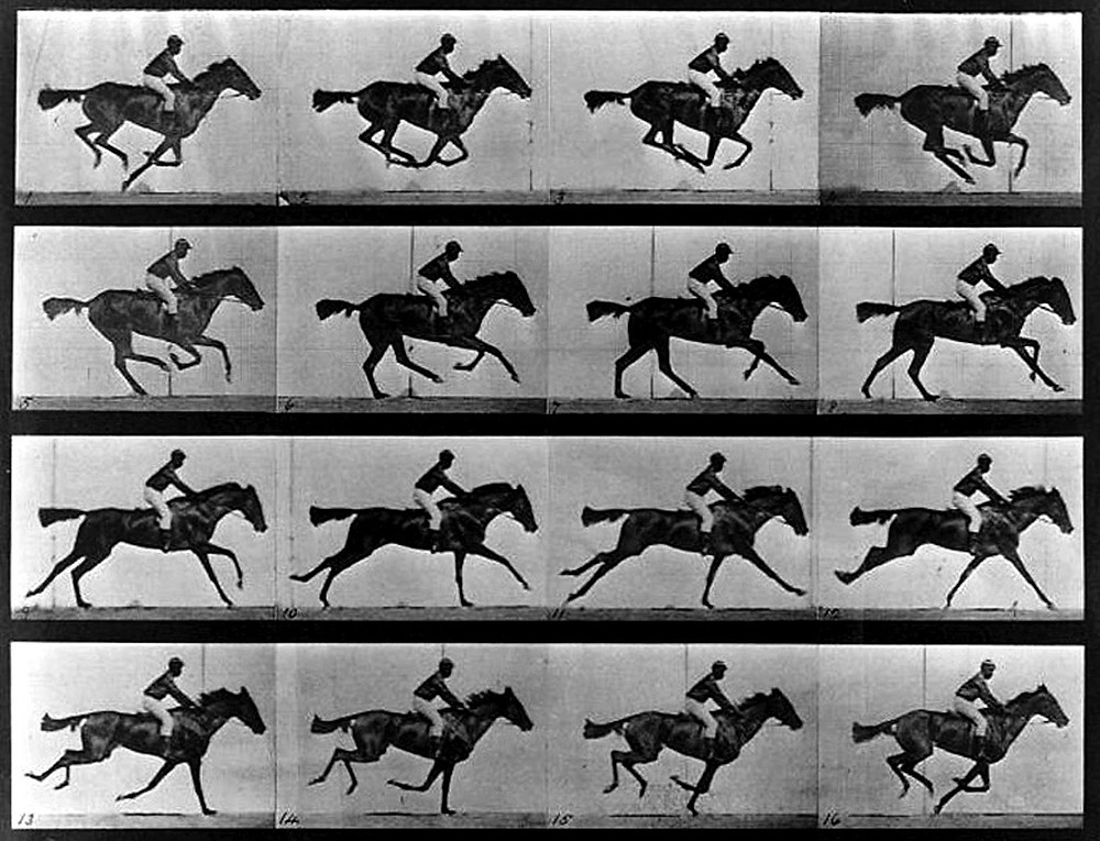 Un cheval au galop, 1878, Eadweard Muybridge