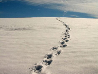 Caminante No Hay Camino - Antonio Machado - Poesía