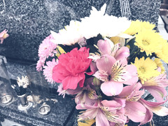 お墓まいりとお花とビール。