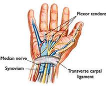 dr pfisterer hand