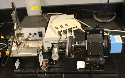 CellScale Biomaterials MicroSquisher (gel microparticle mechanics and hydrogel tensile testing)