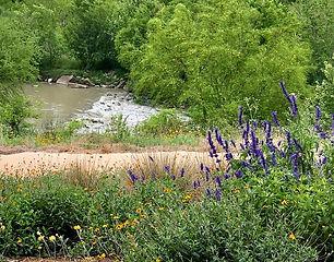 River Clicks 2.JPG
