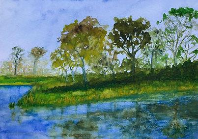 Blue River Trees.JPG
