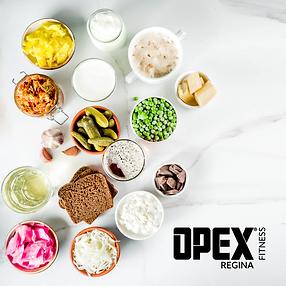 OPEX Regina Recipe Book
