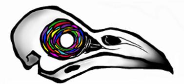 Raven skull psychadelic eye