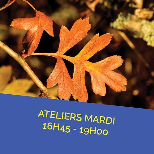Atelier mardi 9 octobre de 16h45 à 19h00