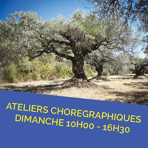 Pré inscription à l'année Ateliers Chorégraphique Dimanche 10H - 16H30