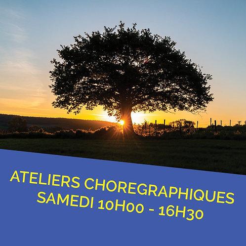Pré inscription à l'année Ateliers Chorégraphique Samedi 10H-16H30