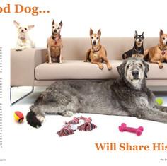 eightdogs.jpg