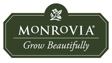 monrovia (1).jpg