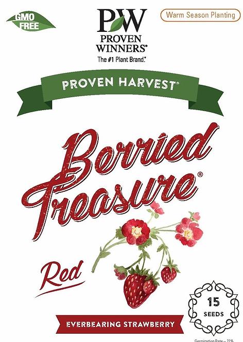 Berried Treasure Red Strawberry Seeds