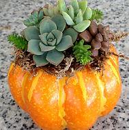 FallPumpkinPlanters.jpg