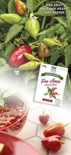 Fire Away Hot Pepper Seeds