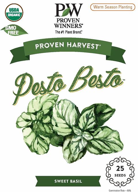 Pesto Besto Sweet Italian Basil Seeds