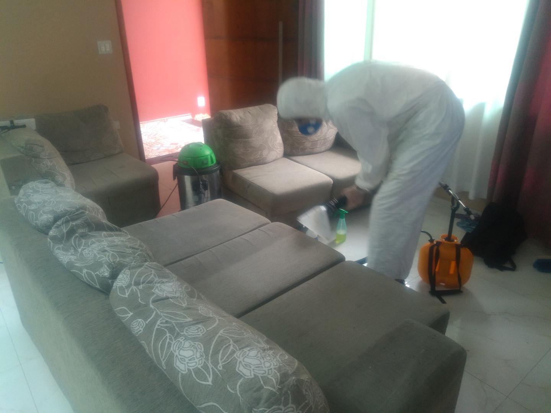 Higienização de Sofas Com Segurança Ilha Clean