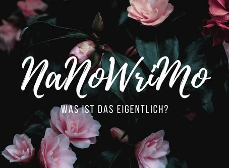 Was ist NaNoWriMo eigentlich?