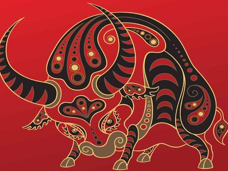 Le Nouvel an chinois: Année du Buffle