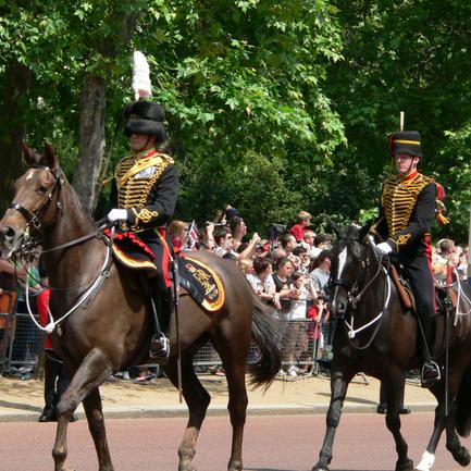 EXCLUSIVE: Man loses hand at barracks housing Royal Horse Artillery