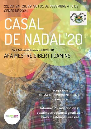 Cartell_Nadal'20.jpg