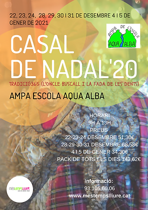 Cartell_ Casal_Nadal2020-21.png