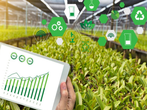 Agritech startup Origo raised Rs75 Cr in debt funding from YES Bank