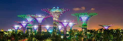 tourism | thenewnorm.sg