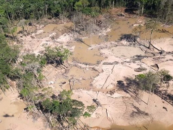 Terra Indígena Yanomami é a segunda área protegida mais desmatada na Amazônia, indica Imazon