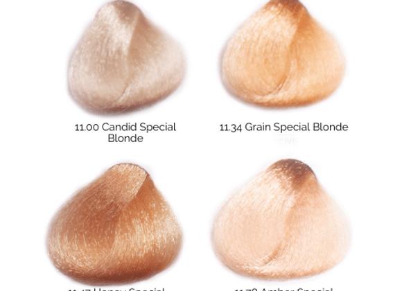 BES Special Blonde Regal Soft Color