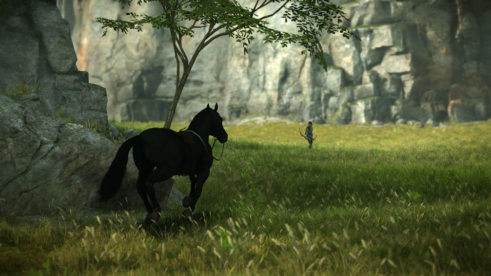 SHADOW OF THE COLOSSUS™_20201206224821.j