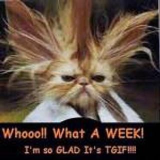 I Confess: I love Mondays
