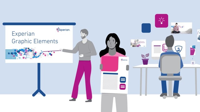 Experian Graphic Elements Guide