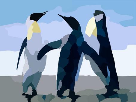 Penguin Sense
