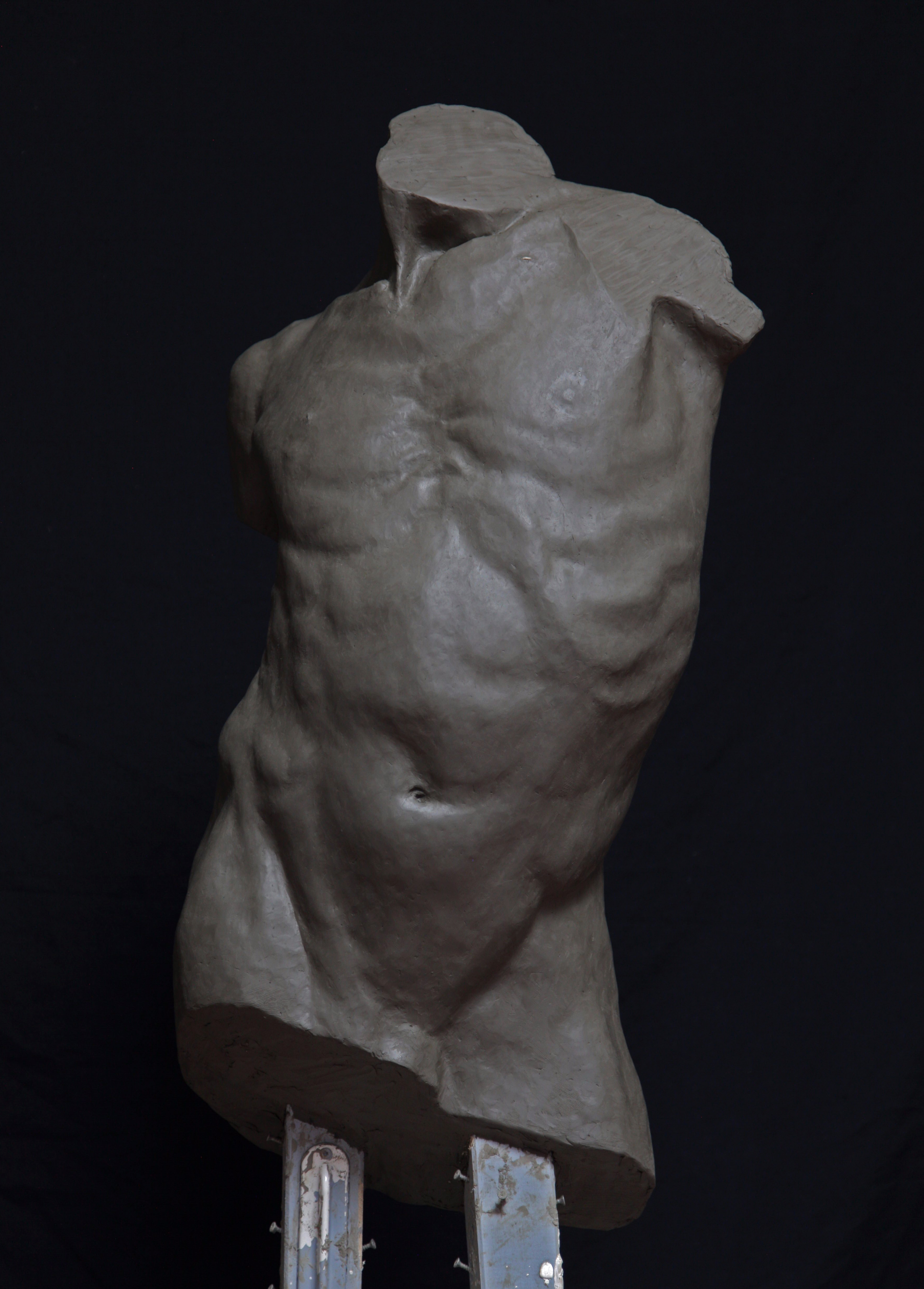 busto maschile
