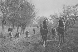 1800s farm
