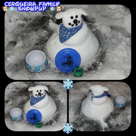 Cerqueira Family