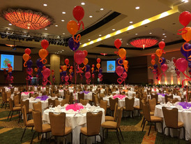 Fun Fundraiser at Sheraton Ballroom