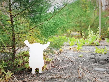 與藝術家一起讓好事發生|好事交易所攜手藝術家阿咧 A-Lei 一起種下屬於公民的森林