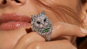 那些征服貓奴的珠寶們|狂野情蹤 貓貓遊戲人間(可愛篇)