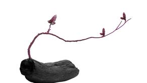 台灣之光!AKACHEN 以純鈦珠寶「木蘭」成首家英國 V&A 博物館購藏的台灣珠寶品牌