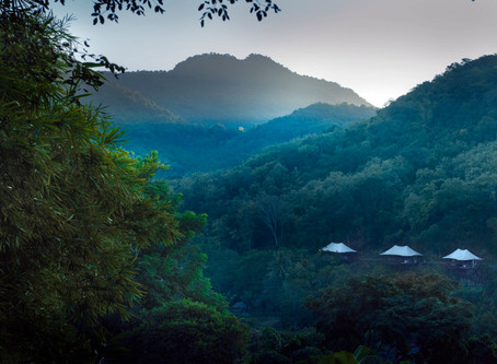 古都雨林秘境                                      Resort in the Rainforest