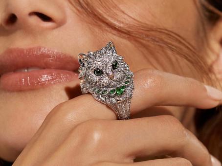 那些征服貓奴的珠寶們 狂野情蹤 貓戲人間(可愛篇)