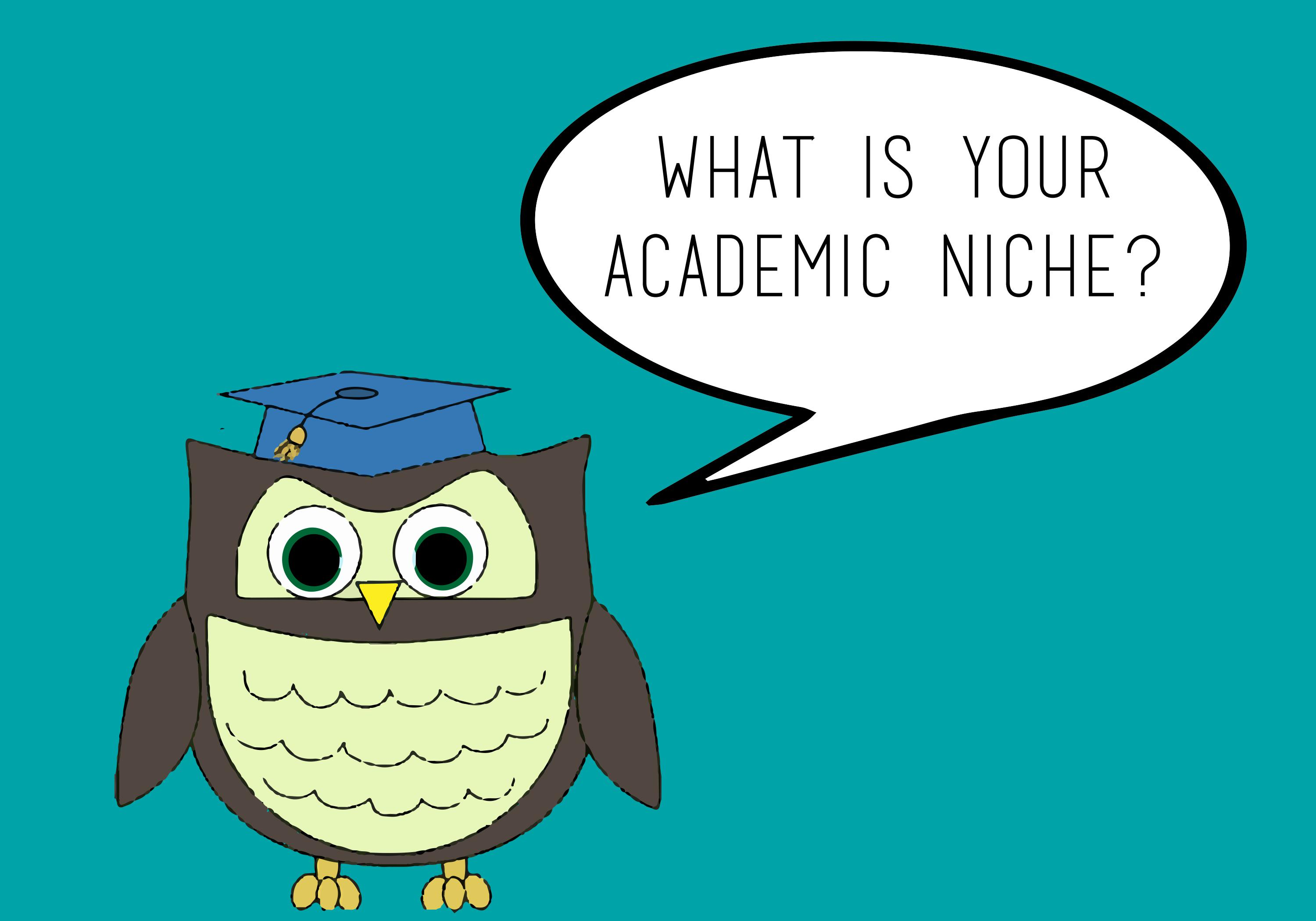 What is Your Academic Niche