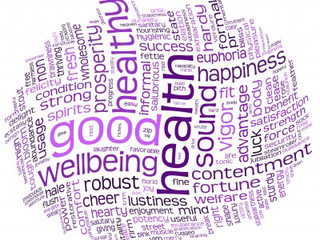 PBL's... What's the Point? The Cause and Effect of Personal Well-being Days