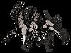 Logo Harddraverijvereniging Prins Hendrik