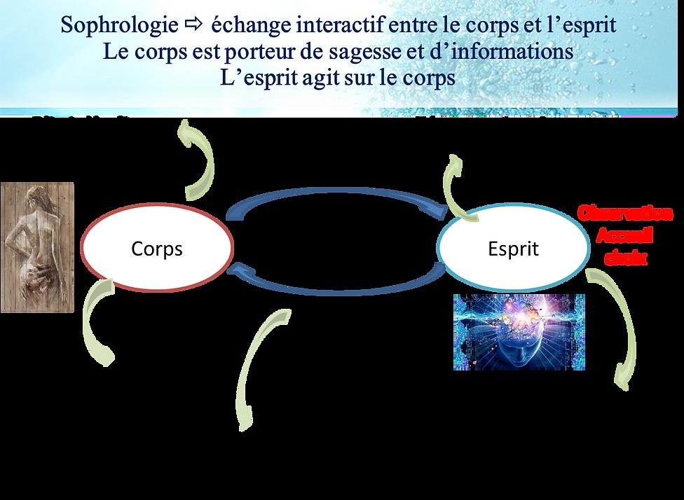 sophro principe 1.png